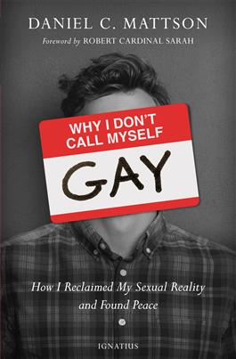 Root for the Home Team: Dan Mattson's new non-gay book