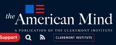 American Mind Banner